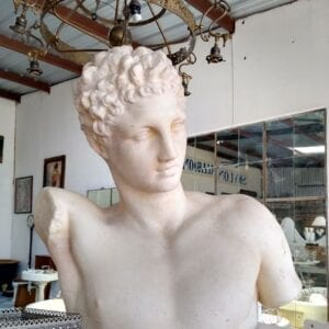 Plaster bust of a classical young Greek.